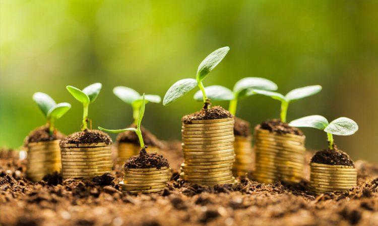 Grāmatvedības e-studijas un finanšu plānošana Biznesa vadības koledžā
